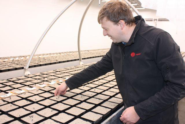 картоптың тұқымдық секторы